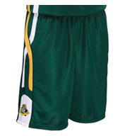 Adult Helix 9 Inch Basketball Short